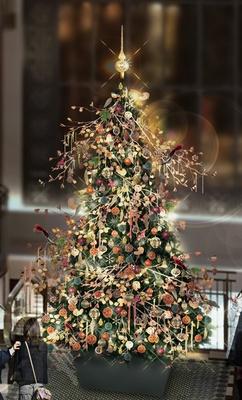 【写真を見る】SPARKLING TREE〜森で煌めくクリスマスツリー〜/ハービスPLAZA ENT