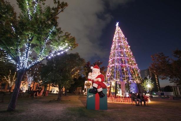 クリスマスムード一色となるノリタケの森(名古屋市西区)