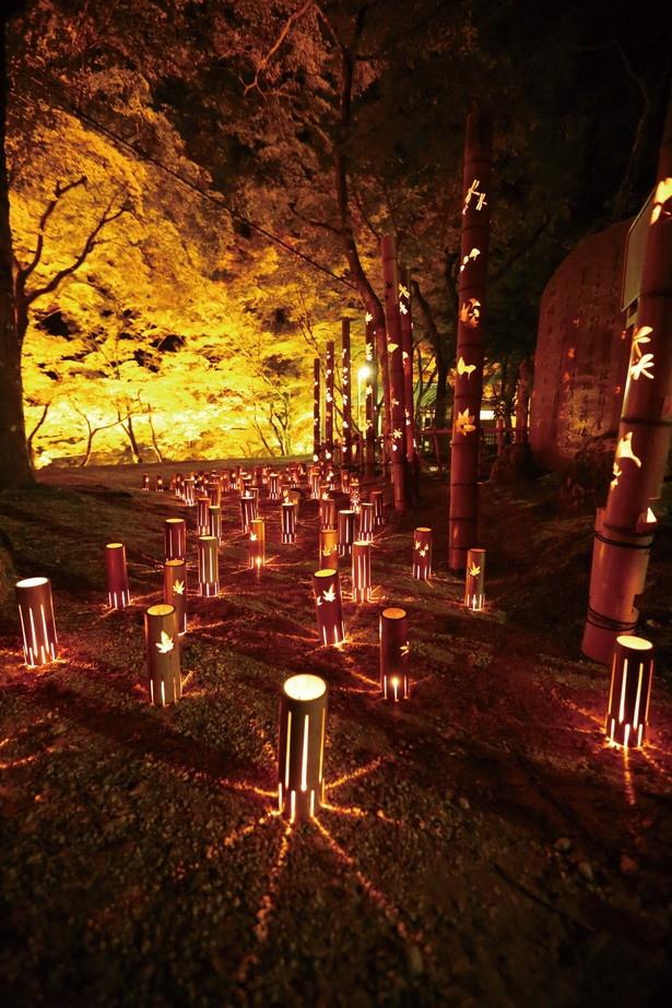 香積寺の夜イベント「竹灯りの香積寺」もSNS映え必至!