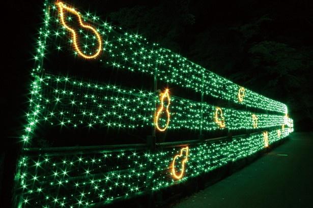 イルミウォールでは、ひょうたん形の光が鮮やかにつらなる