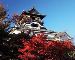 国宝犬山城の紅葉は11月下旬から12月上旬までが見ごろ