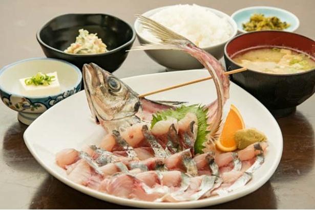 コスパよし!「アジ刺身定食」(1000円・夜1100円)は、アジ丸1匹の刺身がメインの定食