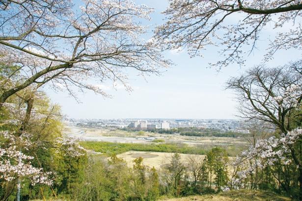 ハイキング途中にある「中の丸」。ここからは、多摩川の向こうに昭島の街まで抜けた景色と、さらに右には所沢の西武ドームが見える