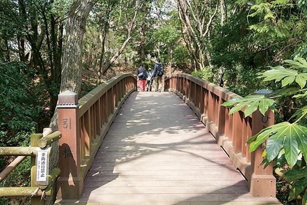 中の丸と本丸の間にある「引橋」の跡。この橋は、戦の時には渡れないようにする仕掛けがあった。こちらから本丸へ進む