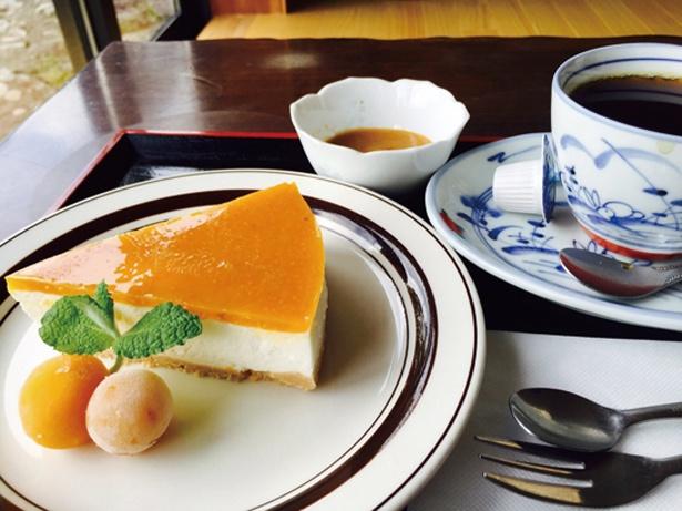 「ほおずきのレアチーズケーキセット」1000円。池の水で淹れたコーヒーまたは紅茶付き