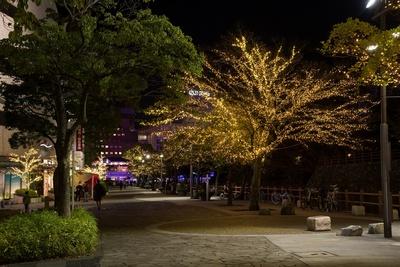 リバーウォーク北九州および小倉城周辺の街路樹もあでやかに煌く