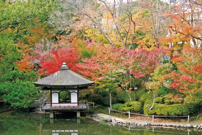 美しい紅葉が自慢の「西之丸庭園」