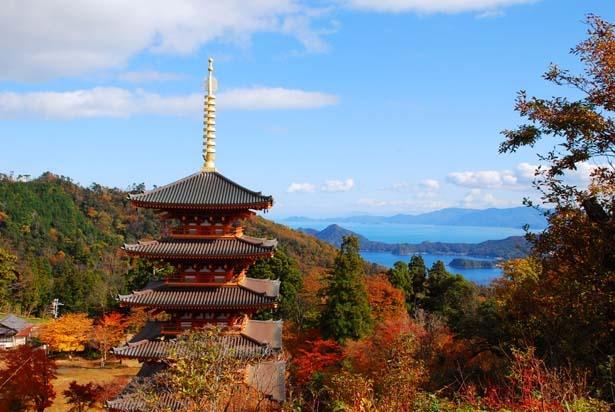 境内を彩る紅葉越しに望む天橋立/成相寺