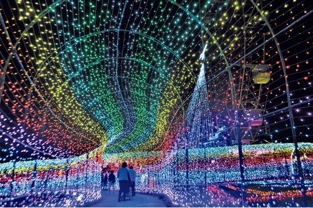 【写真を見る】イルミネーションのアーチがかかる「虹のトンネル」は毎年にぎわう人気スポット!そのほか、東京ドイツ村の園内には撮影ポイントがいっぱい