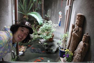 お祭りの金魚がすくすく成長!