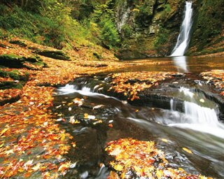 落葉がはじまると、紅葉した落ち葉で滝つぼも赤く染まる。写真は琵琶滝の様子/赤目四十八滝