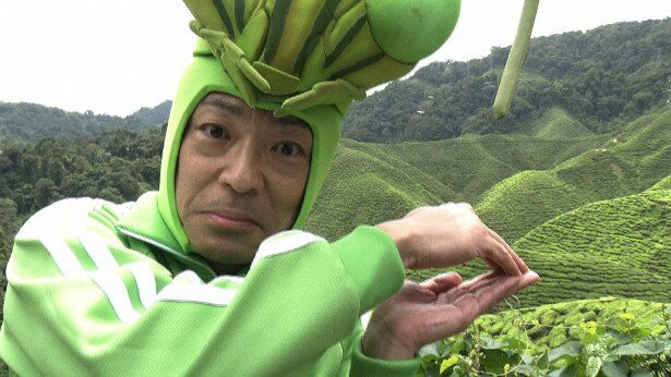 今回もカマキリ先生はキレッキレ!