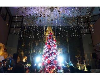 点灯前のクリスマスツリー。点灯前でも十分豪華だ