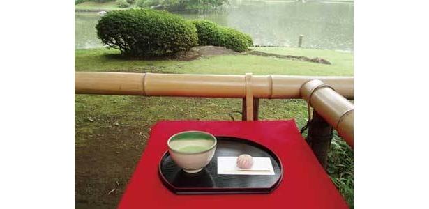 「六義園」ではお抹茶も飲める