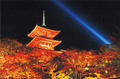 本堂(工事中)や三重塔などの周辺に広がるヤマモミジが、照明に照らされ夜の闇に浮かぶ光景は圧巻/清水寺