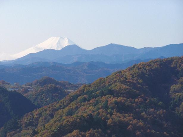 標高195mの天覧山山頂から見える絶景。晴れた日は富士山や飯能市街、東京スカイツリーを一望