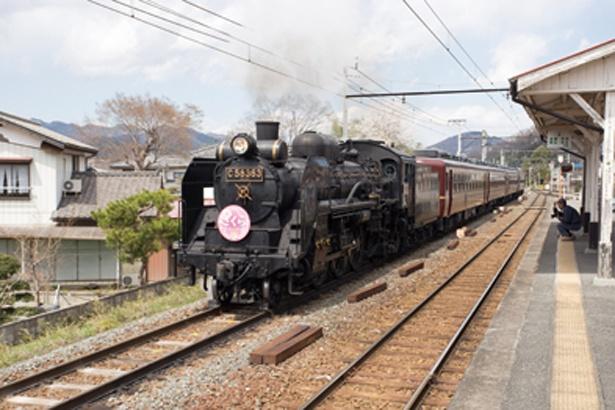 ゴール地点の和銅黒谷駅ではSLが通過するので、要チェック!運行確認は048-523-3317へ電話を