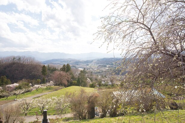 下山後に広がる里山風景。春はサクラを観賞できる
