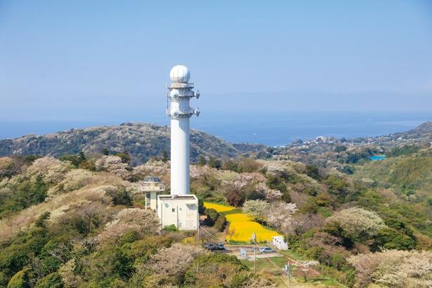 大楠山山頂にある展望塔からは、三浦半島全域から富士山、房総半島までの絶景が。視界をさえぎる物がないので、360度の大パノラマが広がる