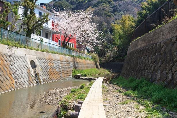前田川入口周辺は川のせせらぎが心地よい平坦なコース