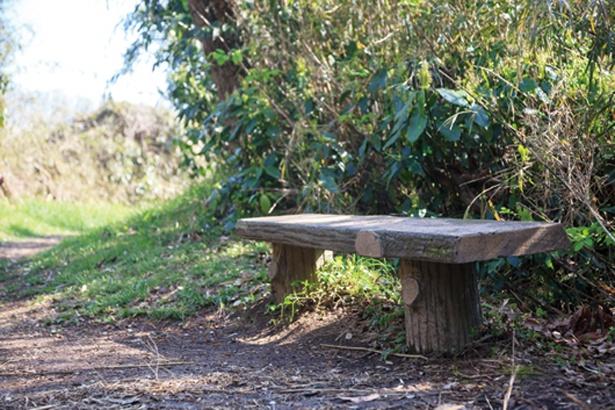 前田川入口から雨量観測所までの道にはベンチが多く、ひと休みしやすい