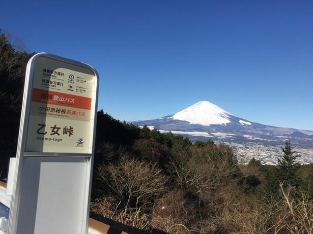乙女峠バス停から富士山の姿が。バス停は、東京駅から小田急箱根高速バスで約2時間