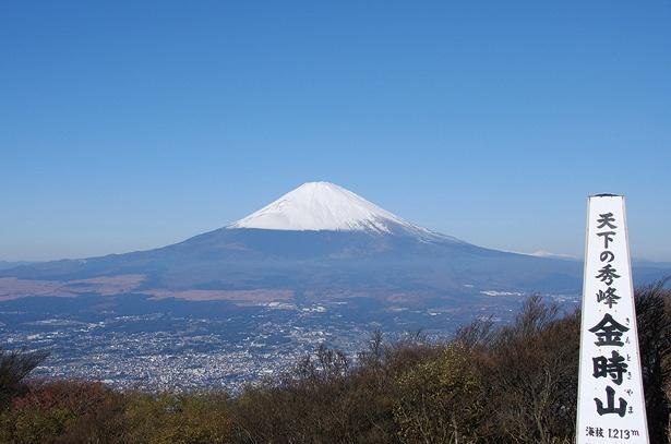 金時山山頂からは、裾野まで美しく見える富士山を目の前に見ることができる