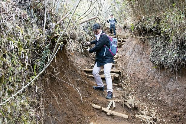 金時山山頂から公時神社分岐までには急な下り坂があり、不安定な赤土なのでロープや木の根につかまりながら下りる