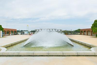 福岡市東区にある自然あふれる国営公園「海の中道海浜公園」