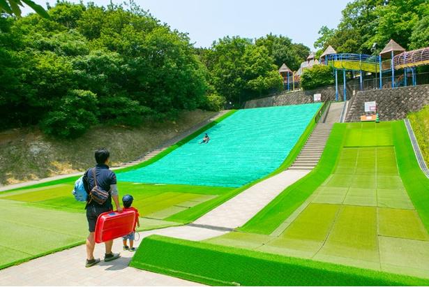 「東平尾公園 大谷広場」で人気の草スキー。人口芝で安全性も高くて、スリルも味わえる!