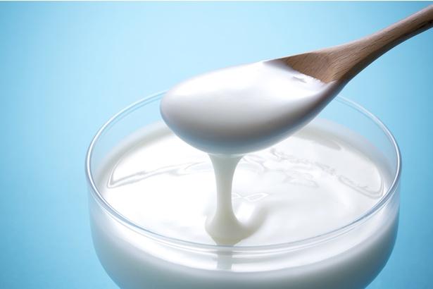 ヨーグルトや乳酸菌飲料に新たな可能性が?