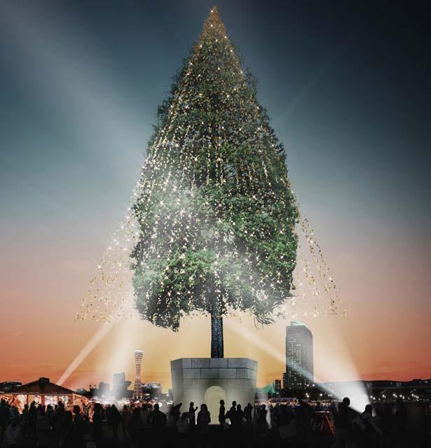 【写真を見る】根鉢の上は展望台で、高さ約6mの鉢の上に登れる(有料)/めざせ!世界一のクリスマスツリープロジェクト~輝け、いのちの樹。~