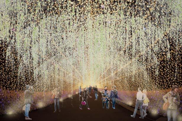 入場口から続くプロムナード/めざせ!世界一のクリスマスツリープロジェクト~輝け、いのちの樹。~