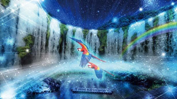 イグアスの伝説~The legend of Iguazu Falls~/ネスタ イルミナ~光のさんぽみち~
