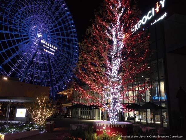 高さ日本一の観覧車とEXPOCITYの町並みを華やかにライトアップ/万博記念公園