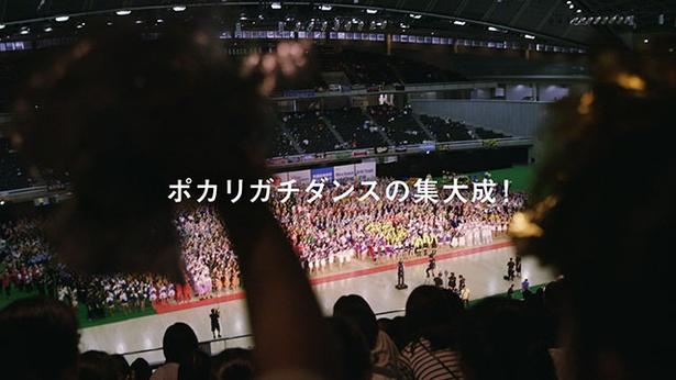 新CM「日本縦断 うちの学校のポカリダンス」篇の予告編 23
