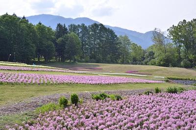 四季折々の美しい草花も見どころ