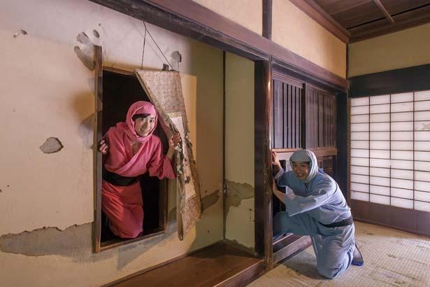 【写真を見る】「藤林家」の旧家屋を利用したからくり忍者屋敷/甲賀の里 忍術村