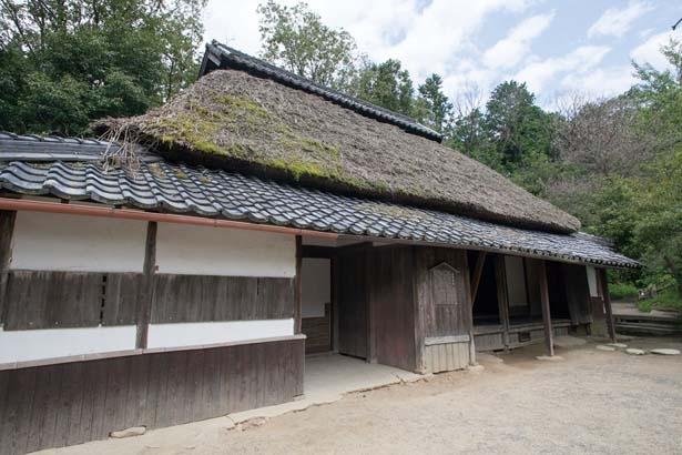 村内にからくり忍者屋敷などが点在/甲賀の里 忍術村