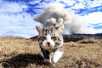 おしりから煙が!?阿蘇山噴火の瞬間をとらえた1枚