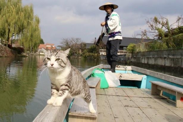 福岡県・柳川で川下り体験