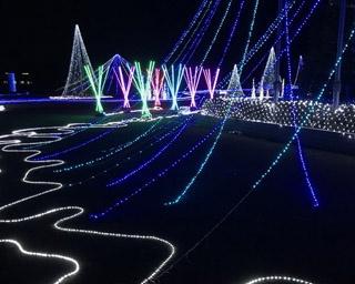 【三重県×イルミ】約10万個のLEDライトが彩る中で、いろんな体験もできちゃう期間限定スポット!