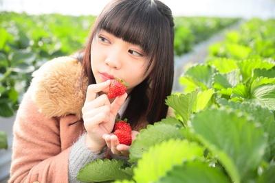「あ!あっちにも美味しそうなイチゴがいっぱい!目移りしちゃう!」