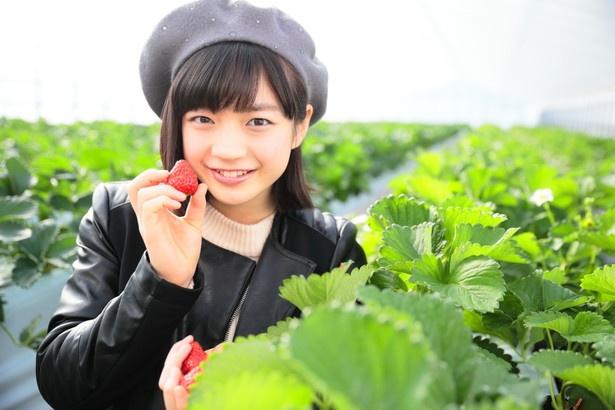 「見て!大きなイチゴだよ」