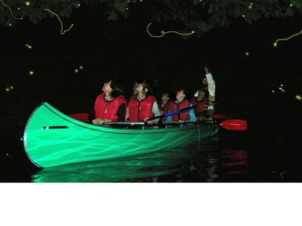 【写真を見る】夏の蛍が飛び交う湖面を巡る「ホタル観賞クルーズ」は3歳以上から2700円(税込)で参加可能。グループで1艇を貸し切りにするプランもある