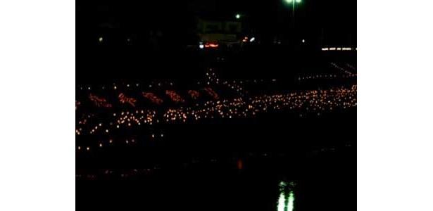 花月川の河川敷には8000本の灯籠が並ぶ