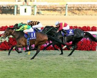 阪神競馬場・芝1,600mで開催する2歳馬限定のGI。今年のマイル王に君臨するのは!?(写真は2016年のもの)