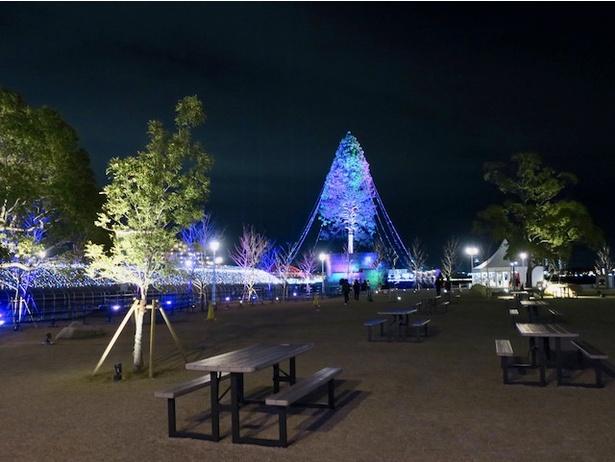 メリケンパークの広場から、世界一のツリーと光のトンネルがセットで見られる