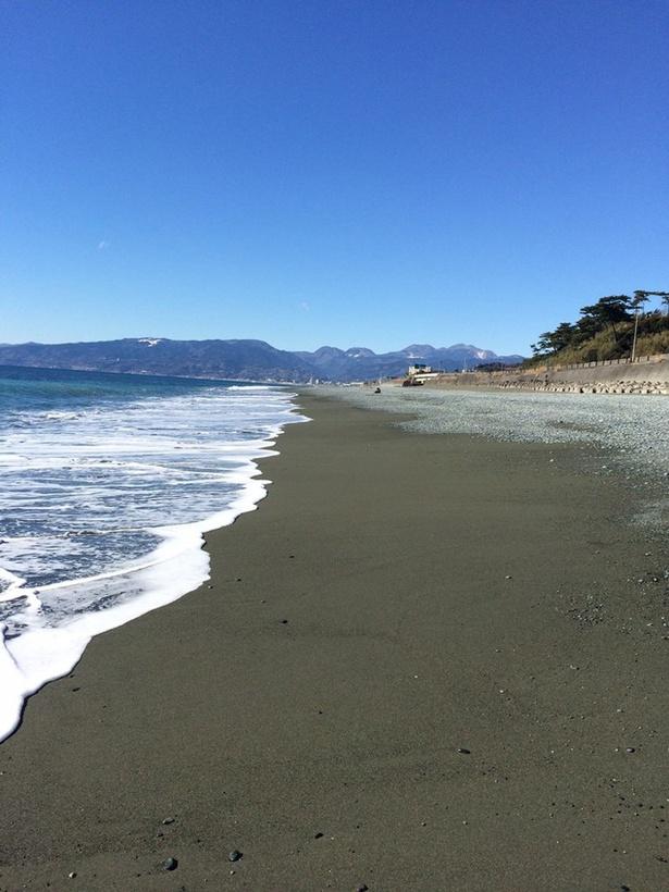 【写真を見る】海にも山にも近い、自然に恵まれたロケーション