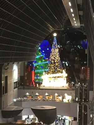 東広場サイドから眺めるツリー&大階段。離れているからこそ、大階段の図柄がバッチリわかる
